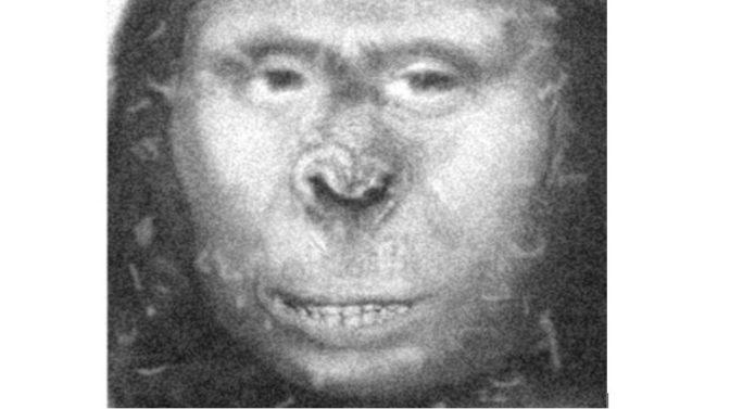 La prova del DNA suggerisce che la donna russa Zana potrebbe essere stata una sottospecie di uomo moderno